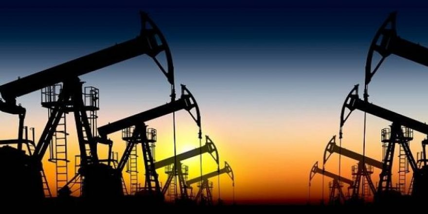 Nirxê petrolê daket 20 dolaran