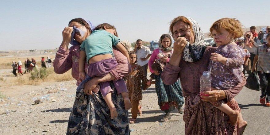 Belgeyên nû yên jenosayda Êzidîyan ketin destê Netewên Yekgirtî