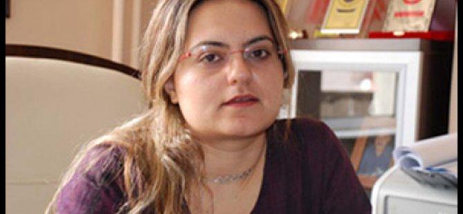 Damezrênera VAKADê Zozan Ozgokçe hat desteserkirin