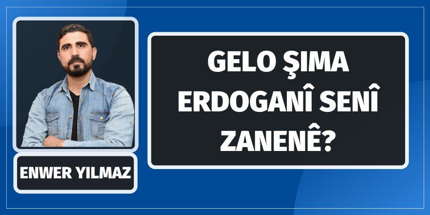 Enwer Yilmaz: Gelo Şima Erdoganî senî zanenê?