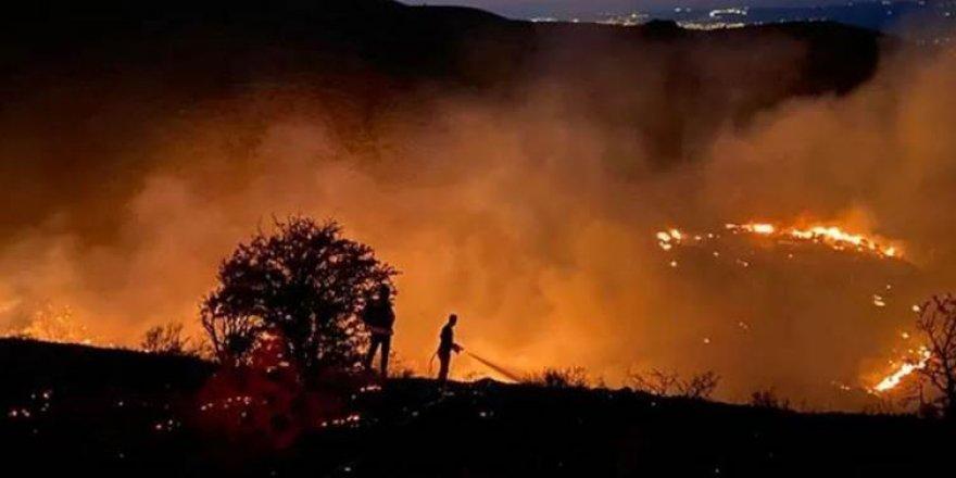Xarpêt | Çiyayê Mastarê ji doh ve dişewite: 150 donim erd şewitî