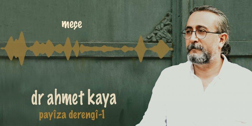 """Dr. Ahmet Kaya û albûmeke ji """"Payiza Derengî"""""""