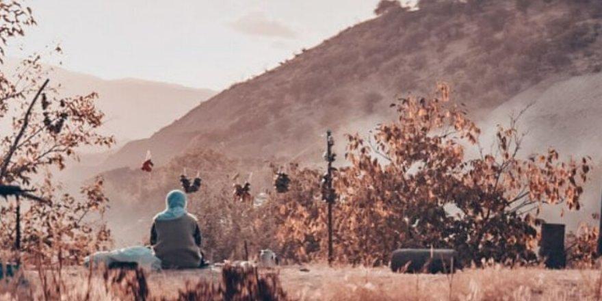 Filmê 'Govenda Alî û Zîn' Festîvala Altin Koza de di xelatî girewî