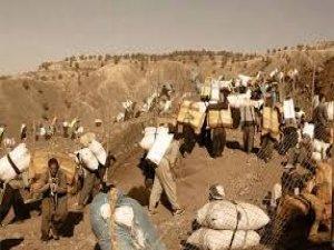 Pasdarên Îranê dîsa kolberekî kurd kuştin