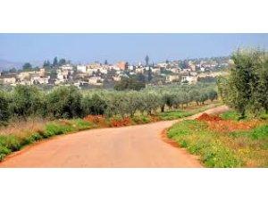 Li Efrînê bombeyek bi karkerên zeytûnan de teqiya