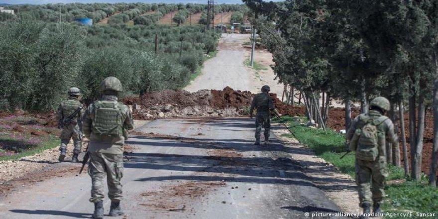 Tirkîyê îsal 13 hezar Ton zeyta Efrînê firotîye