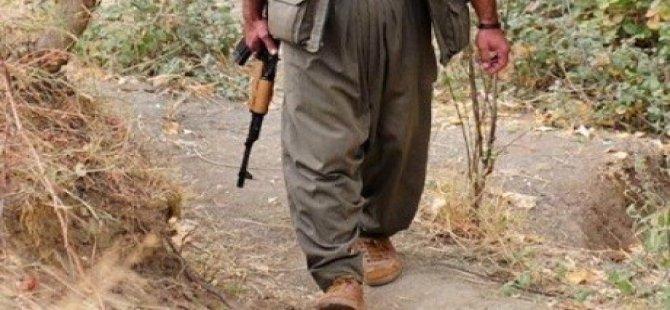 PKK Serokê Baskê Ciwanên AKPê yê Elkê kuşt!