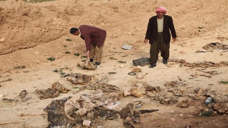 NY li ser gorên bikomî yên Kurdên Êzdî lêkolînê dike