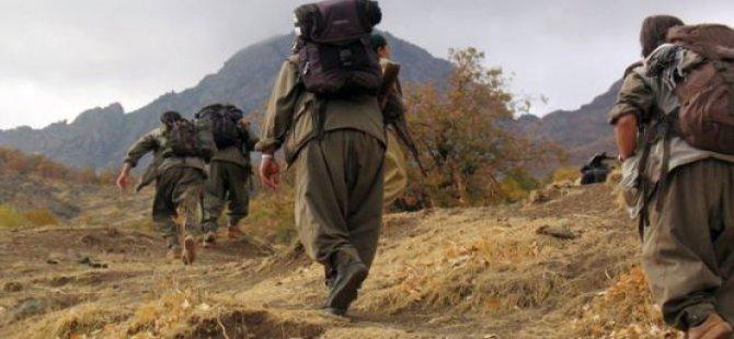 61 Kesayet; Ji PKKê re:Şerî bisekînin! /Ji dewletê re:Gav bavêje!
