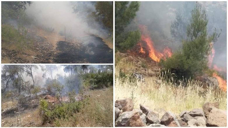 Çiya û daristanên Efrînê jî tên şewitandin!