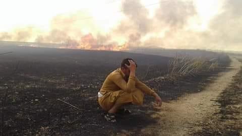 Li Rojavayê Kurdistanê bi dehan zevîyên gundan şewitî!