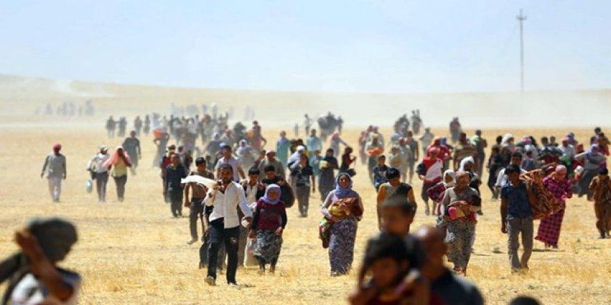 Nûtirîn amara qurbanî û rizgarbûyên Êzidî hat ragihandin