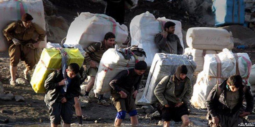 Kolberekî kurd hat kuştin