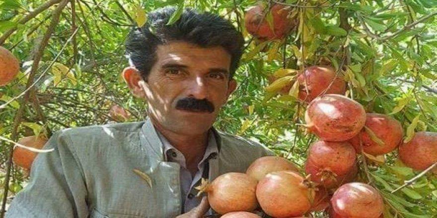 Berhemên Herêma Kurdistanê li Japonyayê hatin nişandan