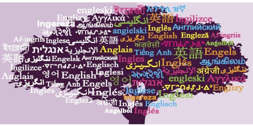 Serê du hefteyan zimanek ji holê radibe