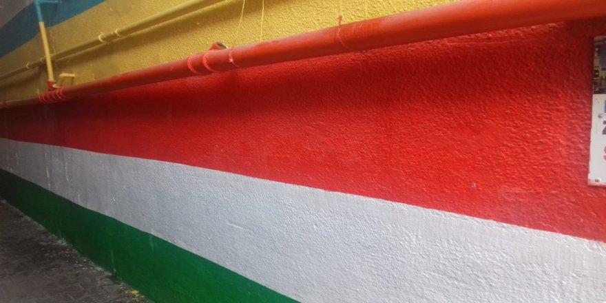 Kuçeyêkê Dîyarbekirî bi rengê Ala Kurdistanî ame xemilnayîş