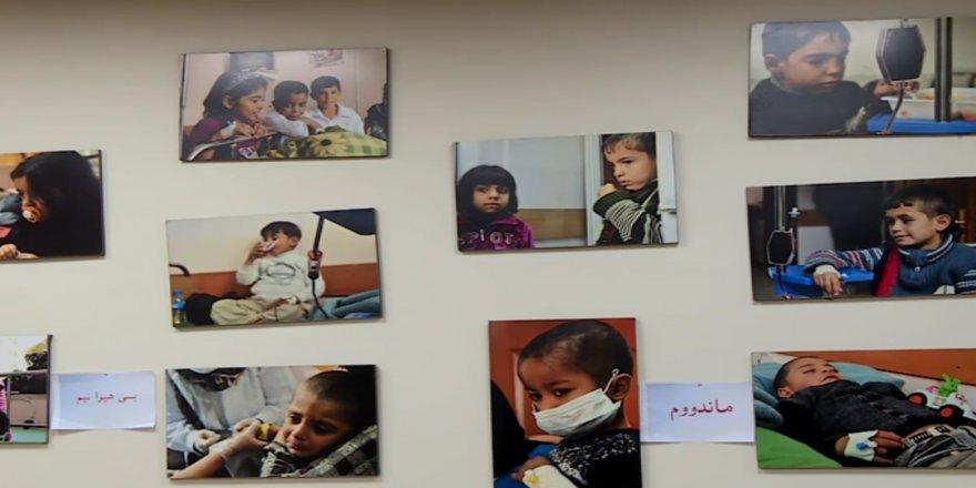 Li Kurdistanê nêzikî 4 hezar nexweşên Talasemiyayê hene