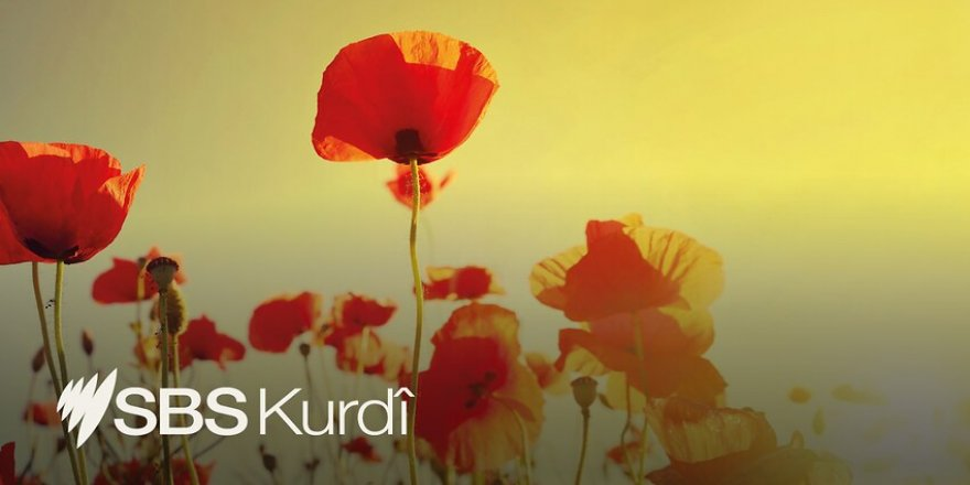 Gelo ma Tirkiyê ta roja îroj Kurdan asîmîle dike?