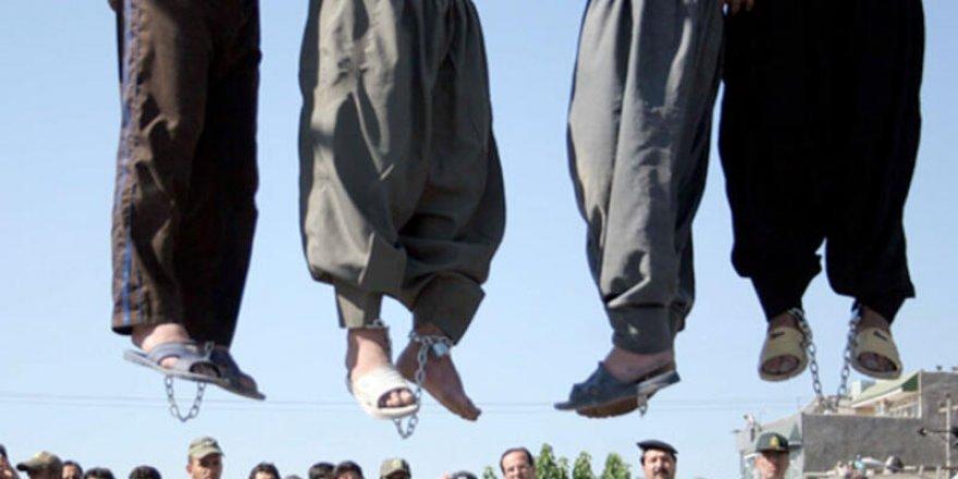 Bajarê Rojhilatê Kurdistanî Kirmaşan de 5 kurdî amê dardekerdene