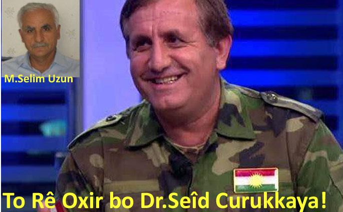 To Rê Oxir bo Dr.Seîd Curukkaya!