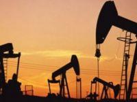 Kurdistan ji 5 welatên OPECê dewlemendtir e