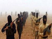 NY: Li Iraq û Sûriyê 20 - 30 hezar çekdarên DAIŞê hene