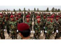 Pêşmergeyên Roj digel YPG û PYDê şêwirî