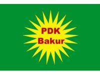 PDK-Bakur: Partîyên Bakûrê Kurdistanê ji ber navê xwe tên dadgehkirin.