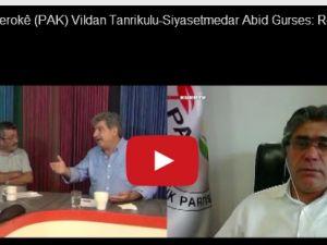 Mustefa Ozçelik, Vildan Tanrikulu, Abid Gurses: Li ser hewildana darbeya leşkerî li Tirkiyeyê